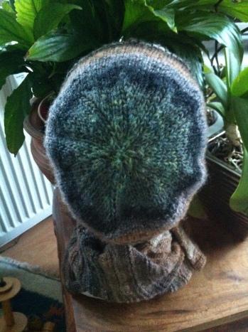 Mütze aus Kureyon Fb 217, Schal aus Regia Twist